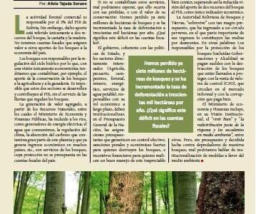 A favor de la deforestación (Petropress 21, 8.10)