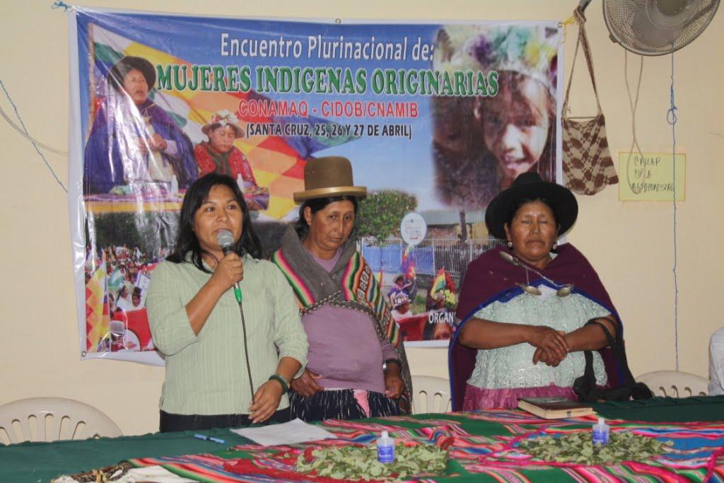 Resolución del V encuentro nacional de mujeres indígenas originarias de Bolivia