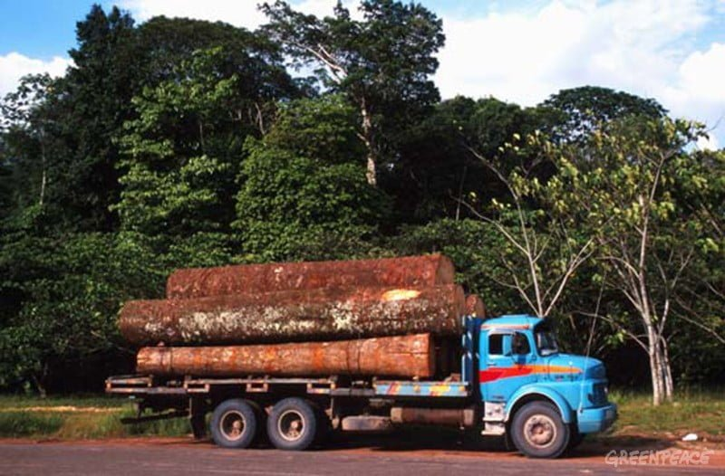 Posición del sector campesino de Pando en relación a las conseciones forestales maderables y no maderables en la amazonia Boliviana
