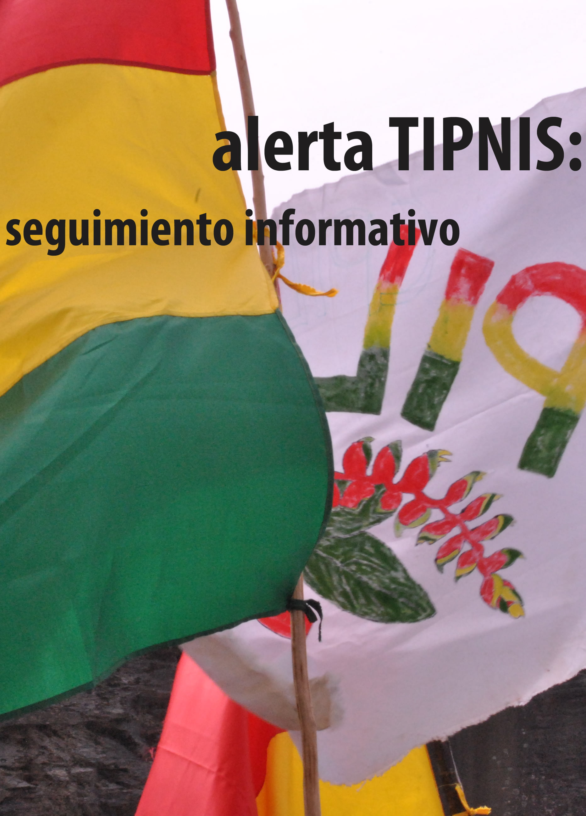 Consulta TIPNIS: COMPENDIO DE INFORMES