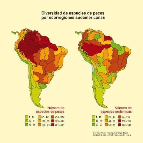 Diversidad de especies de peces por ecoregiones sudamericanas
