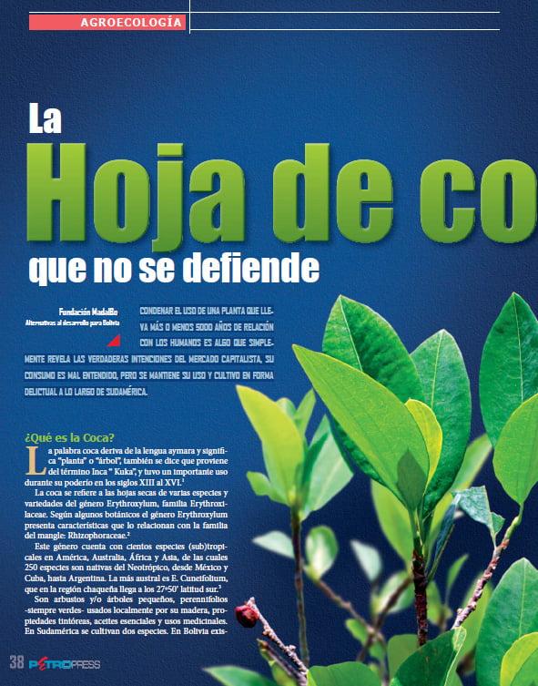 La hoja de coca que no se defiende (Petropress 29, 9.13)