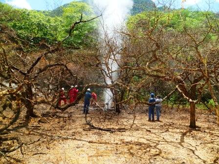 Ventear gas y responsabilidades. Irregularidades en la gestión de una fuga de gas de YPFB en el Parque Nacional Aguaragüe