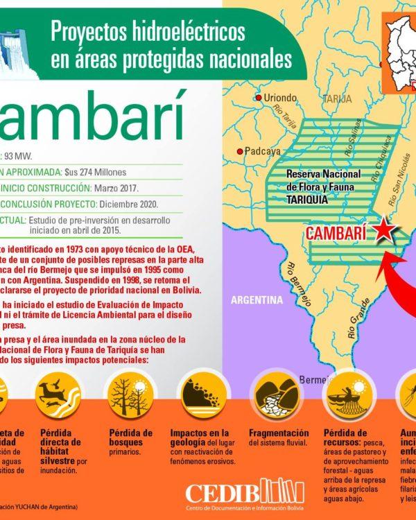 Cambarí: Proyectos hidroeléctricos en áreas protegidas de Bolivia