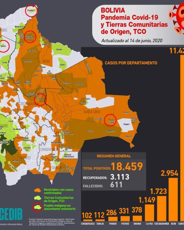 Mapa casos positivos de coronavirus y Tierras Comunitarias de Origen, TCOs (14.6.20)