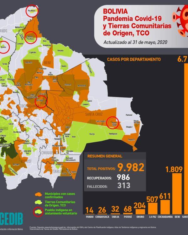 Mapa casos positivos de coronavirus y Tierras Comunitarias de Origen, TCOs (31.5.20)