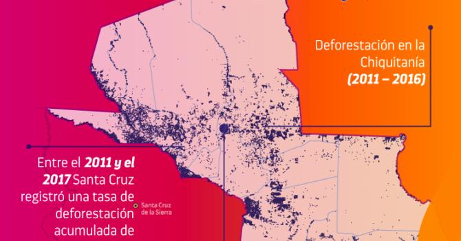 Desmonte en la Chiquitanía II