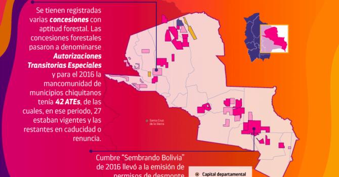 Tierras forestales en la Chiquitanía II
