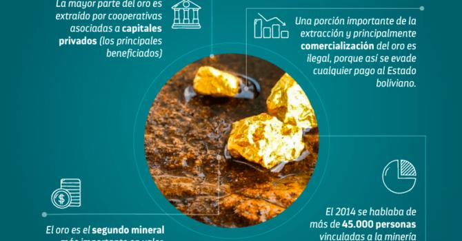 Ríos de mercurio: Impacto económico de la minería de oro