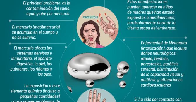 Ríos de mercurio: Impactos del mercurio en la salud