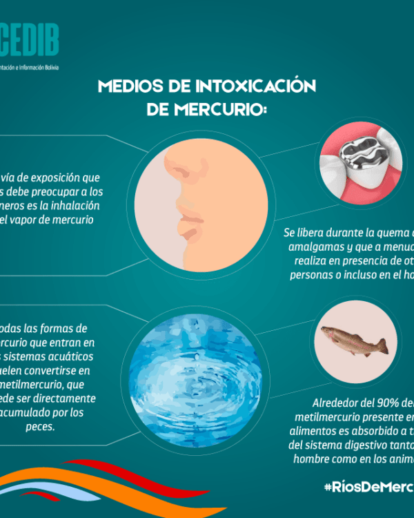 Ríos de mercurio: Medios de intoxicación por mercurio