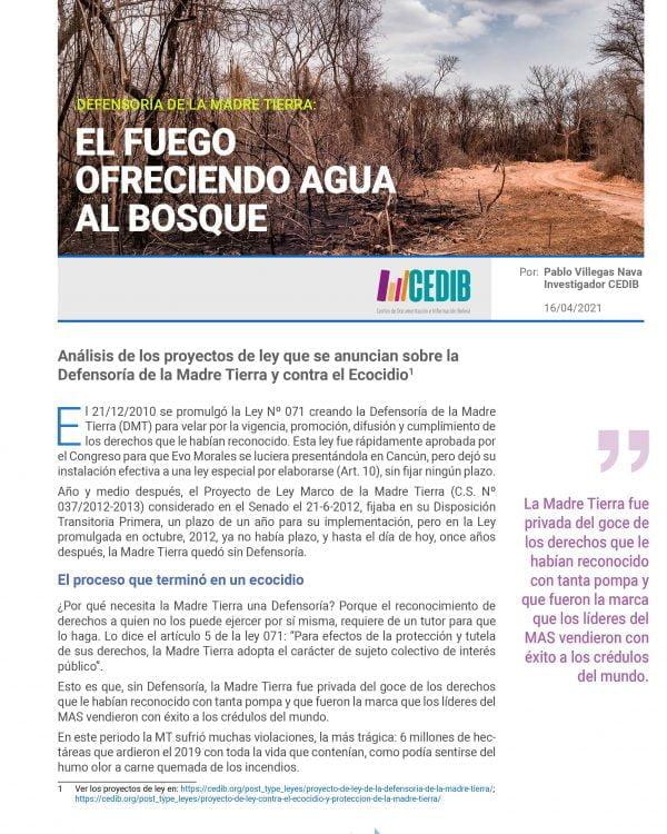 Defensoría de la Madre Tierra: El fuego ofreciendo agua al bosque